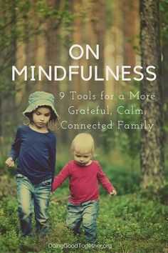 On Mindfulness: Nine Tools for a More Grateful, Calm, Connected Family