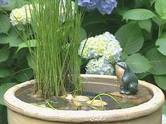 Easy to Assemble Tabletop Water Garden  http://www.hgtv.com/landscaping/tabletop-water-garden/index.html