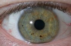 Iridology and tongue reading are safe, non-invasive diagnostic techniques that have been validated by many studies and challenged by others. It deserves further investigation to find its strengths so that it may Tongue Health, Alternative Medicine, Investigations, Study, Reading, Gift, Future Tense, Eyes, The Body