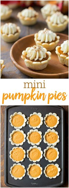 Pie Bites Mini Pumpkin Pies - the perfect bite size treats that are great for entertaining! They take mintues to assemble!Mini Pumpkin Pies - the perfect bite size treats that are great for entertaining! They take mintues to assemble! Mini Desserts, Cream Cheese Desserts, Fall Desserts, Just Desserts, Delicious Desserts, Yummy Food, Bite Sized Desserts, Plated Desserts, Cream Cheese Pumpkin Pie