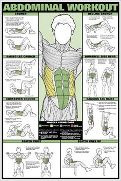 Back Workout Professional Fitness Instructional Wall Chart Poster - Fitnus Corp. Gym Workout Tips, Abs Workout Routines, Aerobics Workout, Triceps Workout, Workout Challenge, Gym Workout Chart, Wall Workout, Gym Chest Workout, Exercise Chart