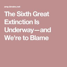 The Sixth Great Extinction Is Underway—and We're to Blame