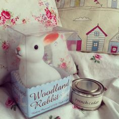 woodland rabbit night light and french candle