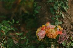 Sunshine Coast Bc, Documentary Photography, Vancouver Island, Coastal, Events, Weddings, Flowers, Wedding, Royal Icing Flowers