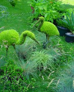 Amaze Pics & Vids: Creative Art works in Plants...  think I need this guy by the japanese maple tree