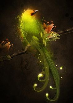 """Night Light"" art by ~Owhl Digital Art / Photomanipulation / Fantasy Photoshop Effects, Photoshop Tips, Mellow Yellow, Photoshop Tutorial, Light Art, Fractal Art, Fractals, Bird Art, Photo Manipulation"