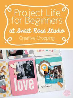 #ProjectLife for Beginners: Week Eleven at Sweet Rose Studio #scrapbooking