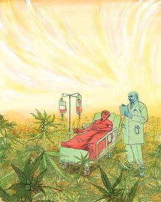 Illustration for an article on medicinal marijuana.