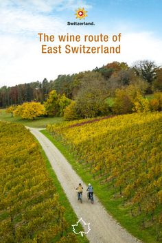 The wine route of East Switzerland leads from Schaffhausen to St. Gallen, through vineyards, past scenic sights and picturesque villages. Cosy inns and restaurants invite you to take a break along the way, including a feast for your taste buds. #IneedSwitzerland #SwissAutumn📍 Thurgau, East Switzerland © Switzerland Tourism, Published: October 2021 Switzerland Tourism, Wine Festival, Take A Break, Wines, Farmer, Country Roads, Autumn, Taste Buds, Cosy