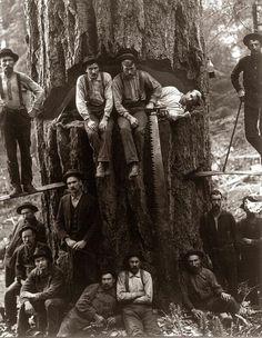 Lumberjacks, 1901 pic.twitter.com/XqTc8R4f8y