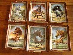 Franklin Mint verzamelobjecten decoratieve paarden borden 6 stuks met…
