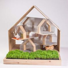 """Modern cat house design is brought into attention by the """"Giving Shelter"""" fundraiser in LA with 14 custom-build cat houses designed by Architects for Animals. Outdoor Cat Shelter, Outdoor Cats, Outdoor Shelters, Outdoor Sheds, Planer Layout, Cat House Diy, Tiny House, Shelter Design, Photo Chat"""