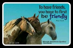 To have friends.you have to first be friendly💖 image by: Jess Lee Rhonda Hendricks Quotes Horse Pictures, Friendship Quotes, Horses, Animals, Image, Pictures Of Horses, Animales, Animaux, Equine Photography