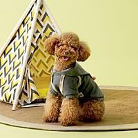 섬네일 Teddy Bear, Toys, Animals, Activity Toys, Animales, Animaux, Clearance Toys, Teddy Bears, Animal