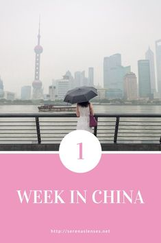 Wondering where to go in China when you only have 1 week in China? This 7 day China itinerary shows you how to see the most famous sights! Having lived in China and also visited numerous times after moving away, I often take it for… China Travel Guide, Asia Travel, Living In China, Visit China, Koh Tao, Brunei, Cool Places To Visit, Nepal, Laos