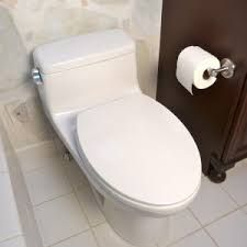 We will provide you best toilet replacement services in Alexandria VA. We want to make sure that everyone can afford our rooter service in Alexandria, Va. Our technicians are well versed in latest tools to match the needs of their clients perfectly. Sink Repair, Toilet Repair, New Toilet, Toilet Bowl, Best Bathroom Tiles, Kohler Toilet, Cleaning Solutions, Alexandria, Plumbing