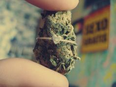 love weed cannabis Romantic weed blog i love smoking WEED weed couple couples that smoke