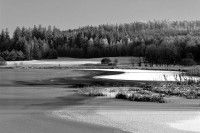 /album/black-and-white/bw-7353upr1-jpg/