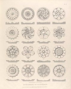 Specimens of patteras. (rosettes)