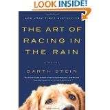 told from a dogs point of view- a lovely book.