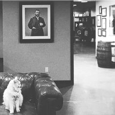 Pres. Grant and his distillery cat. Only at @blaumbros  : @sarahumles on Instagram