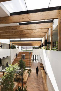 Gallery of Ballarat Community Health Primary Care Centre / DesignInc - 7