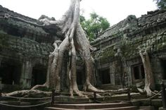 10 movie locations you can actually visit-Siem Reap, Cambodia Vacation Destinations, Vacation Spots, Vacations, Places Around The World, Around The Worlds, Close Encounters, Siem Reap, Going On Holiday, Cool Places To Visit