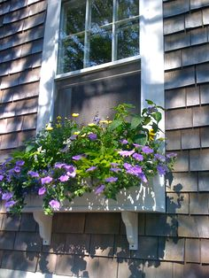 Flower boxes with drip irrigation work.  Be sure to allow for a good drainage system so you do not stain the walls.