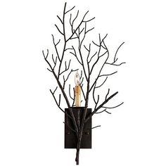 Currey & Company Midwinter Wall Sconce ($540) ❤ liked on Polyvore featuring home, lighting, wall lights, metal lamp, tree branch lights, branch lights, tree branch lamp and outside lights