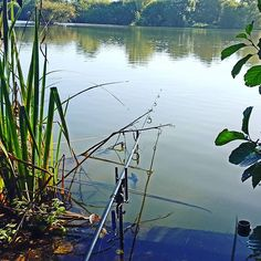 Just cant help myself, on such a beautiful morning. #carpfishing #richardhandel #photography #assofishingline #fishspy #SpottedFin #thecatalyst #teamfin #jointherevolution