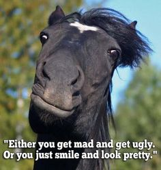 LOL - don't waste your good looks getting all mad and that!  :)