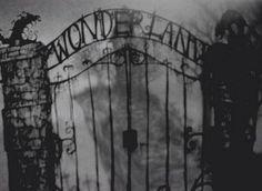 Asylum Wonderland