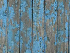 Weathered vertical planks in very old and peeling blue paint.
