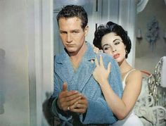 Cat on a hot tin roof, classic