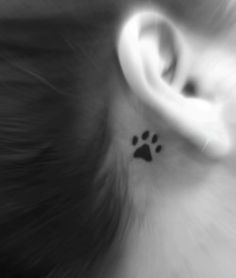 High Quality Cat Paw Print Tattoo Behind Ear Photos