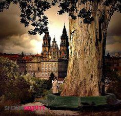 Santiago de Compostela I Vive experiencias y disfruta de planes con gente local en Sherpandipity.com