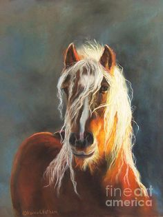 """Ingalyl"" equine pastel painting by artist Karen Chatham of a Gypsy Vanner mare from the Hope of Glory Gypsy Horse Farm in Michigan."