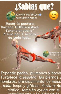 Can you lose weight by doing yoga? Iyengar Yoga, Ashtanga Vinyasa Yoga, Kundalini Yoga, Yoga Meditation, Yoga Fitness, Yoga Poses, Yoga Sequences, Yoga Training, Strength Training