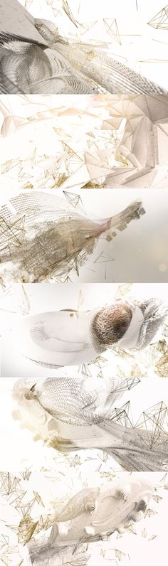Visual exploration for Nike focusing on key aspects of the shoe. Durability, adaptability, power distribution and evolution.   Focusing on these key aspects that describe Nike so well we created 4 visual treatments that show each element in a unique way.  https://www.behance.net/gallery/20181419/NIKE-Visual-Explorations