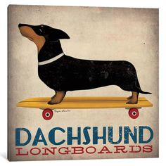 iCanvas 'Dachshund Longboards ' by Ryan Fowler Canvas Print