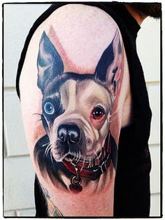Boston Terrier tattoo by Keith Ciaramello.. renowned for his realistic portraiture #tattoo #animal #dog #ink