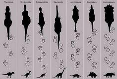 Blog educativo sobre ciencia, historia, ecología, mundo animal y muchos otros temas interesantes.