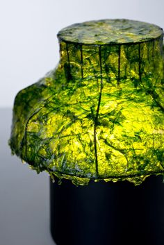 Lamps Made of Seaweed by Nir Meiri