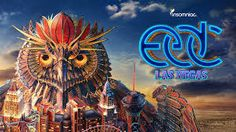 the incredible owl monitors Electric Daisy Carnival.