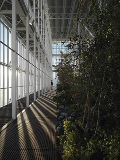 Gallery of Intesa Sanpaolo Office Building / Renzo Piano Building Workshop - 18