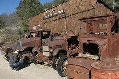Rusty old  ford trucks