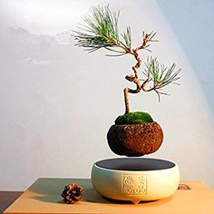 Japanese style Levitating Air Bonsai Pot - Magnetic Levitation Suspension flower (White)