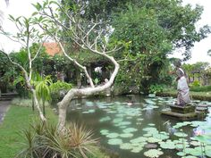 Ma photo Bali Bali, Golf Courses, Aqua, Photos, Water, Pictures