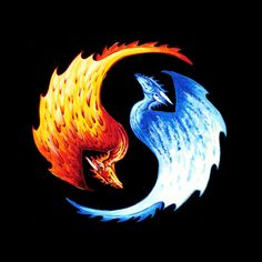 OffWorld Designs - Yin Yang Dragon T-Shirts, $20.00 (https://www.offworlddesigns.com/yin-yang-dragon-t-shirts/)