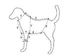 dog clothes patterns - Google zoeken